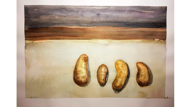 Potetene er kommet – maleri