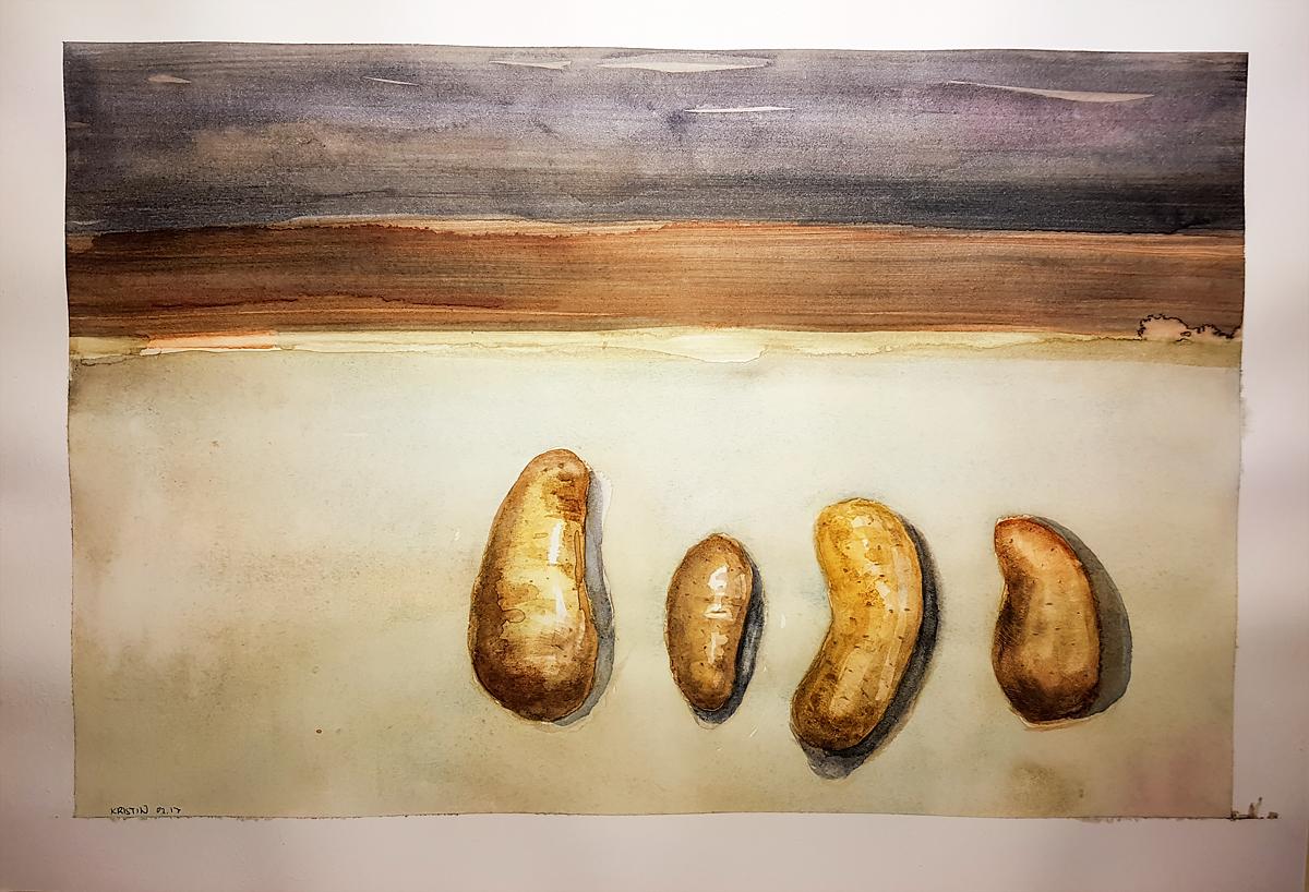 Poteter, akvarell, Kristin Bruun