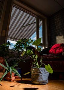 Raster-belysning, foto: Kristin B. Bruun